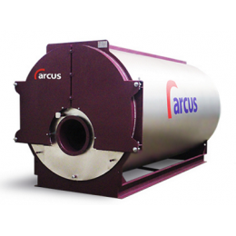 IGNIS-1000